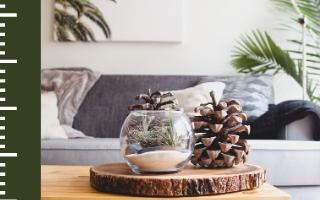 Espaces «cocooning» et endroits «cosy» : Des aménagements pour l'hiver !